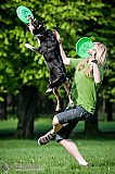 Canine Photography www.k9action.eu FOTOGRAFIA PS�W | CANINE PHOTOGRAPHY